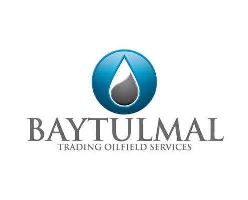 Baytulmal logo 1 495x400 - Choosing the right web hosting plan