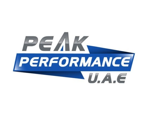 Peak Performance Logo 495x400 - Design Portfolio